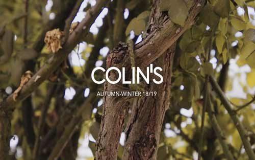 colins_01-500x313